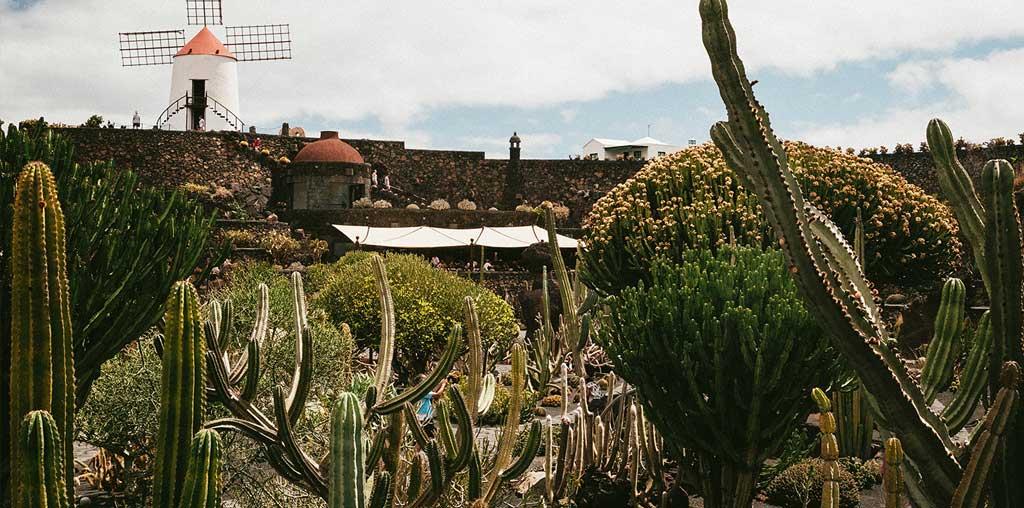 Lanzarote meraviglioso Jardin de Cactus