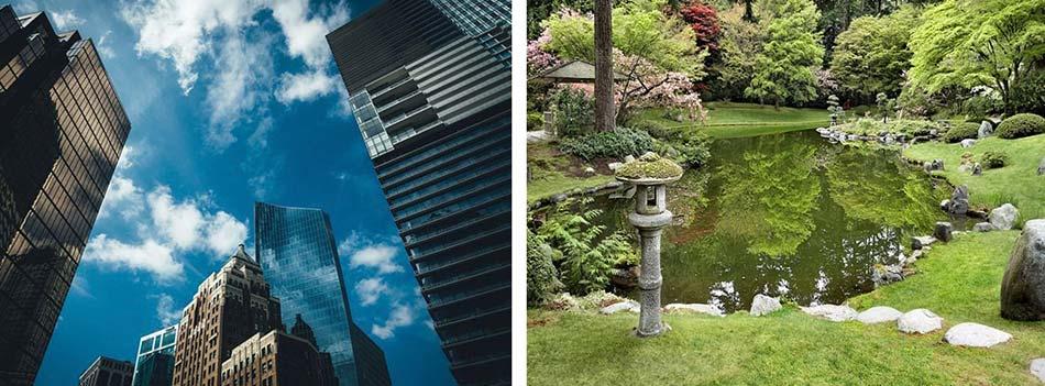 tra giardini orientalie  grattacieli con le vetrate verdi e blu