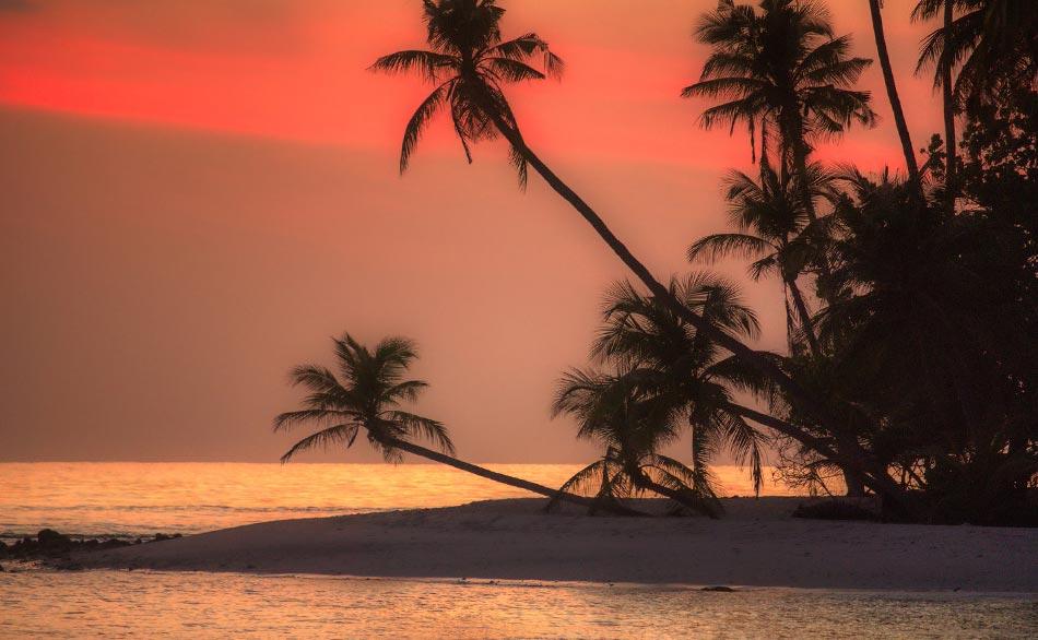una cena sulla spiaggia solo per noi 3, al tramonto, con il cuoco personale che ha cucinato l'aragosta