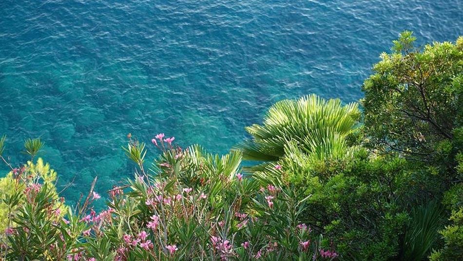 La macchia mediterranea, la spiaggia in ciottoli e il mare cristallino