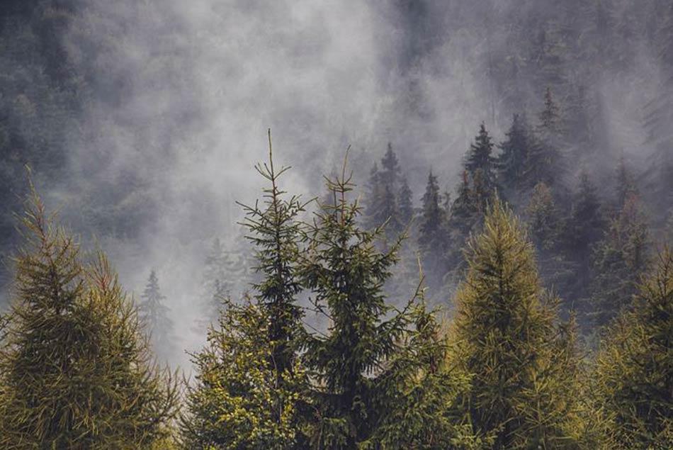 nei villaggi sperduti nella nebbia, negli occhi impauriti dei contadini