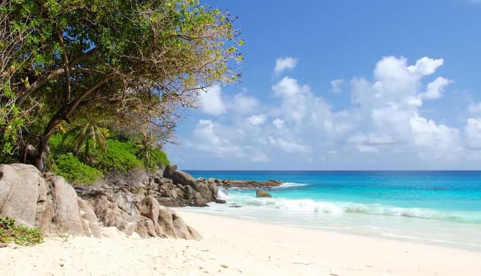 La spiaggia era meravigliosa, sabbia bianca e fine con tanta vegetazione alle spalle