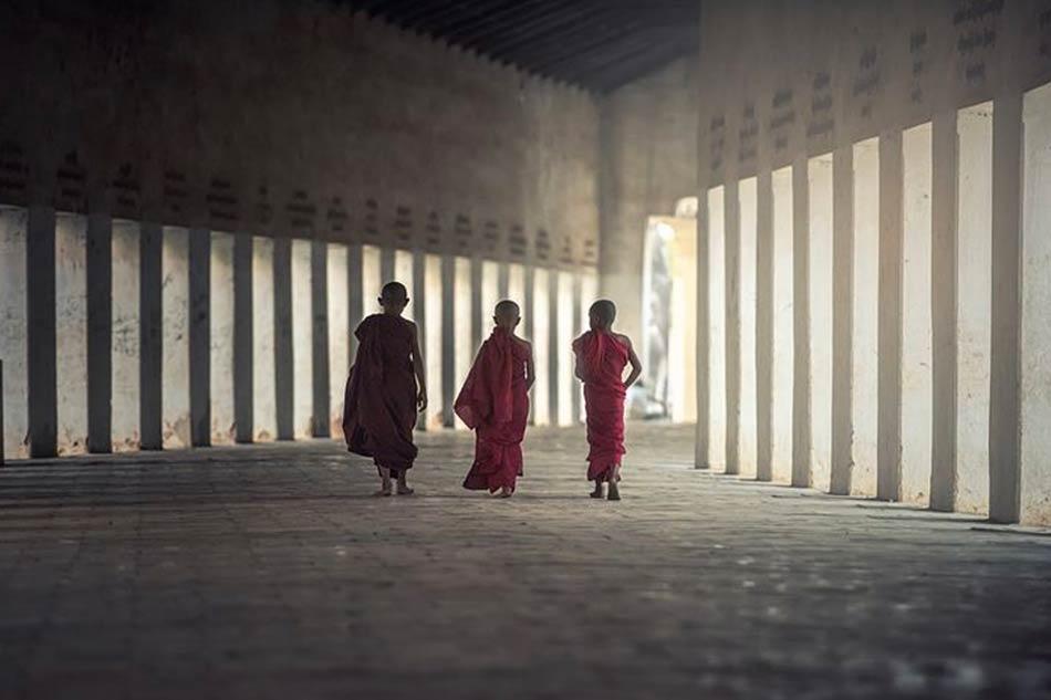 Birmania e monaci