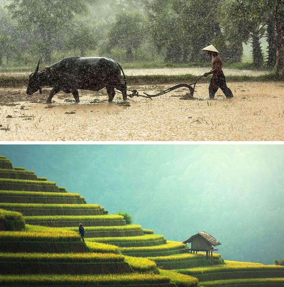 C'è spazio per tanti ambienti selvaggi e solitari in Birmania-Myanmar.