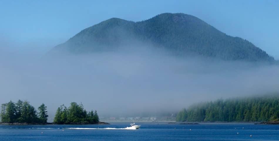Poche altre volte la natura selvaggia mi ha emozionato così, è successo a Vancouver.