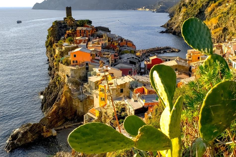 nel '500 venne importata in Liguria