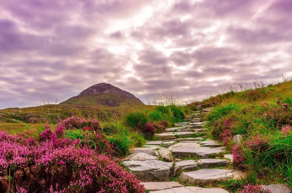 il Connemara National Park vicino Letterfrack