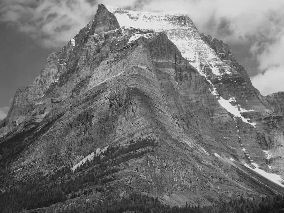 favolosi paesaggi del Montana, coi suoi cavalli bradi, gli alti picchi, i fiori selvatici, i torrenti e i tramonti