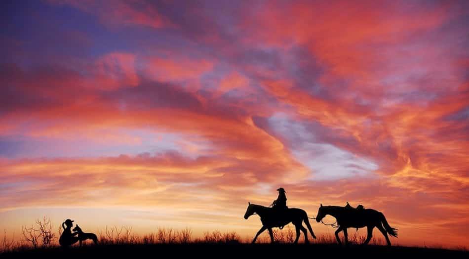 Sin da quel primo momento del Neolitico in cui un cavallo venne imbrigliato ci furono alcuni uomini che l'avevano intuito