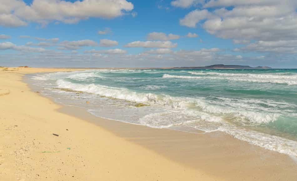 L'acqua preziosa, i pochi campi coltivati, le spiagge dorate sferzate dal vento, le saline immense