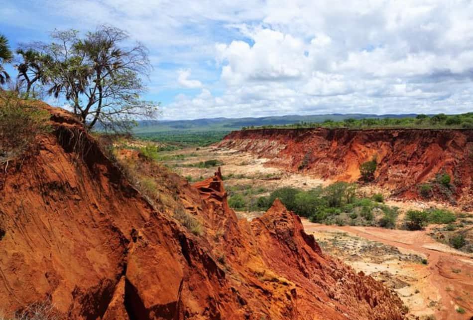 Terre rosse, spiagge bianche, foreste verdi, lagune turchesi: in Italia vi porterete indietro tutti i colori dell'Africa.