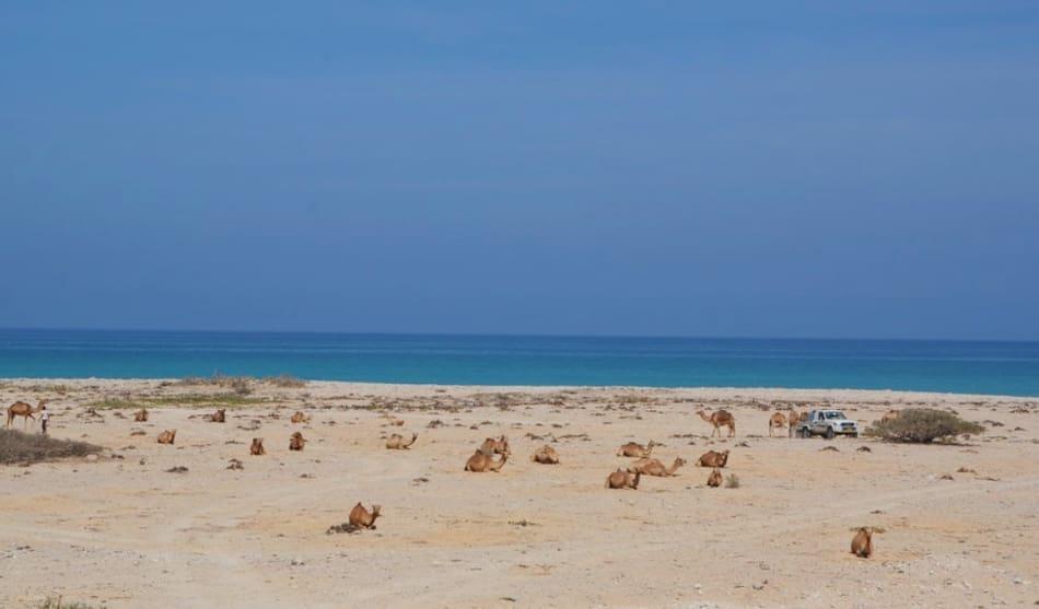 a Mughsail Beach ci sono i soffioni Marneef Cave
